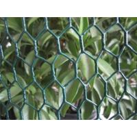 China Continuous twist 25mm with 20 gauge wire PVC Coated Chicken Wire fence on sale