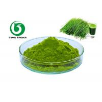 Buy cheap Natural Dried Vegetable Powder Barley Grass Juice Powder 200 Mesh Hordeum Vulgare Linn from wholesalers