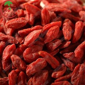 China new crop goji berries price 100% natural goji on sale