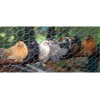 Buy cheap Direct factory Hexagonal wire netting /chicken wire/ hexagonal wire mesh from wholesalers