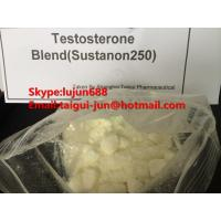 Buy cheap Muscle Testosterone Blend Anabolic Steroid Hormones Sustanon 250  Testosterone Sustanon from wholesalers