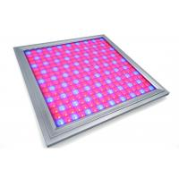 Buy cheap Alluminum Waterproof LED Grow Lights For Vegetables , Indoor Grow Room LED Lights product