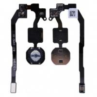 Buy cheap for iPhone 5S Home Button Flex from wholesalers