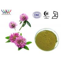 Buy cheap Water Soluble Red Clover Extract Pharmaceutical Grade Treatment For Indigestion from wholesalers