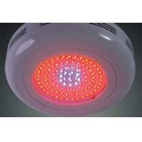 Buy cheap led grow light,  grow led light,  UFO grow light from wholesalers