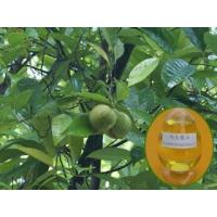 Buy cheap GMP&ISO Semen Myristicae Extract/100% Pure Nutmeg Oil/Nutmeg Extract from wholesalers