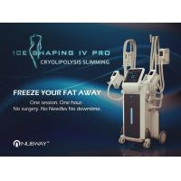 Buy cheap 2018 New Arrivals! Ice Shaping Cool body sculpting Cryolipolysis fat freezing Machine with 4 handles from wholesalers
