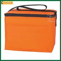 2017 New Style Insulated Cooler Bags 6 Can Cooler Pack