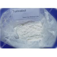 Buy cheap Pro Turinabol Raw Testosterone Powder Aid in Maintaining Strength While Dieting from wholesalers
