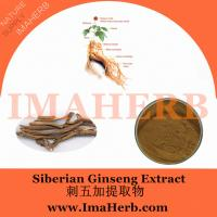 China Factory supply siberian ginseng extract from Felicia@imaherb.com on sale