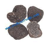 Buy cheap black truffle(tuber indicum) from wholesalers
