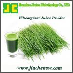 Buy cheap Organic Wheatgrass Juice Powder 25:1 from wholesalers