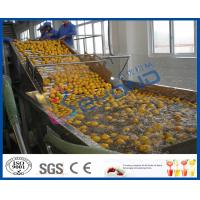 Buy cheap Stepless Shift Fruit And Vegetable Processing Device , Fruit And Vegetable Washer Machine from wholesalers