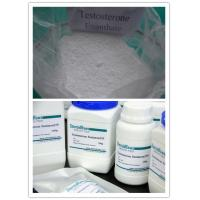 TE Testosterone Enanthate Raw Steroid Powders USP / BP / ISO9001 Standard