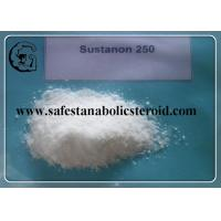 Buy cheap Sustanon 250 Powder Muscle Building Steroids Testosterone blend For Bulking Cycle from wholesalers