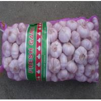 Buy cheap pe mono mesh bag,purple color mesh bag, garlic mesh bag from wholesalers