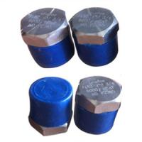 Buy cheap Hex Head Plug, ASTM A182 GR F51, UNS S31803, MNPT Ends from wholesalers