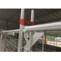 Buy cheap Temporary Fence clamp 80mm ,90mm ,100mm center distance full hot dipped galvanized Australia Made In China 100% quality from wholesalers