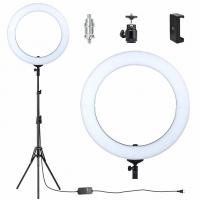 Buy cheap Flashpoint Fluorescent Ring Light With Stand , Video Shooting Photo Ring Light from wholesalers