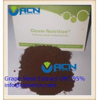 Buy cheap ACNS00199 Grape Seed Extract OPC 95%/Polyphenols 85% | A Clover Nutrition Inc | grape skin extract from wholesalers