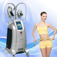 Buy cheap LED therapy cryolipolysis fat freezing cellulite reduction machine etg50-4s from wholesalers
