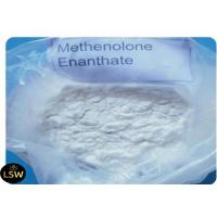 Buy cheap CAS 303-42-4 Methenolone Enanthate Powder , Bodybuilding Legal Steroids 99% Purity from wholesalers