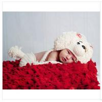Buy cheap beige cartoon animal dog Baby Photography Prop beanie costume set Animal outfit from wholesalers