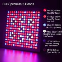 Buy cheap Waterproof Full Spectrum LED Grow Lights With 660nm - 450nm Wavelengh from wholesalers