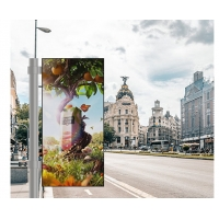 Buy cheap Outdoor Fixed Installation Smart Digital Video Advertising Screen Led Poster Display from wholesalers