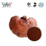 Buy cheap 100% Natural Organic Reishi Spore Powder , Lingzhi Maitake Mushroom Extract from wholesalers