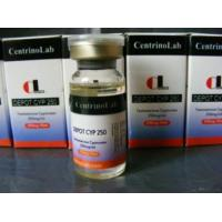 Buy cheap Testosterone Cypionate from wholesalers