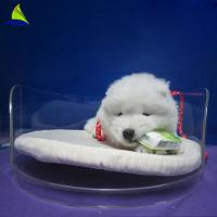 Buy cheap Acrylic Pet Bed Cave House For Dog And Cats Acrylic Dining Room Chairs from wholesalers