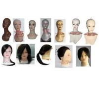 Buy cheap Sell training head,practising wig and Lesson wig---100% human hair, mannequin head,model head from wholesalers