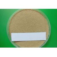 Buy cheap  9014-01-1 Subtilisin Powder Pharmaceutical Raw Materials For Dishwashing Detergents from wholesalers