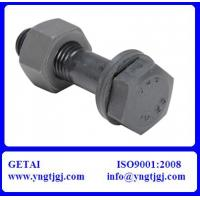 Buy cheap M20 Galvanized ASTM A325 Steel Structural Bolts 8.8 from wholesalers