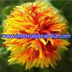 Buy cheap Carthamus yellow from wholesalers