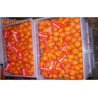 Buy cheap Organic Health Benifit Fresh Mandarin Oranges Contains Energy Iron , Zinc , Sodium from wholesalers