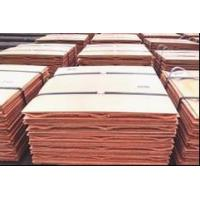 Buy cheap Silicon Metal,Ferro silicon,Ferrotungsten,Copper cathodes,Ferro Titanium from wholesalers