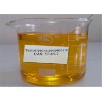 Buy cheap Muscle Building Steroids Testosterone Hormone Testosterone Propionate 57-85-2  for sale from wholesalers