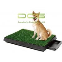 UV Resistant PE Non - Infill Turf Artificial Grass For Pets Indoor And Outdoor