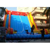 Buy cheap Commercial Giant Plato 0.55mm PVC Tarpaulin Inflatable Slide For Adults 12 * 8m from wholesalers