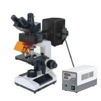 Buy cheap Economic and Affordable price biological Epi Fluorescent microscope from wholesalers