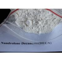 Buy cheap Nandrolone No ester Hormone Powder For Muscle Building , Nandrolone Decanoate Powder from wholesalers