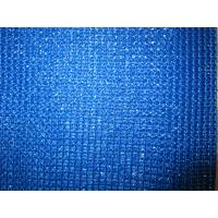 Blue Plastic Fence Netting