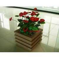 Buy cheap Prefabricated Composite Flower Pots 520 X 520x 526mm , Antisepsis Square Planter Boxes from wholesalers