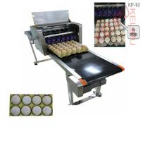 Digital Egg Marking Equipment / Batch Code Printer For Product Identification