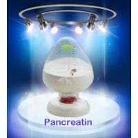 Buy cheap Industrial Leather Treatment 99% Pure Pancreatin Powder SINOzym-PAN4SK from wholesalers
