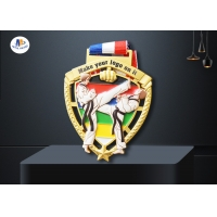 Buy cheap Peltate Shape Stock Medals For Taekwondo Tournament Imitation Gold Plating Colorful Printing In Relief Of  Figure from wholesalers