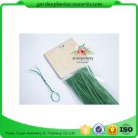 Buy cheap Green Tree Climbing Garden Plant Ties , Plastic Tree Support Ties from wholesalers