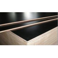 Buy cheap XBR Film Faced Plywood/Construction Plywood/Phenolic Film Faced Plywood from wholesalers